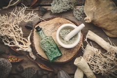 Bottle of infusion and mortar, nut shell, dry plants, eucalyptus and lotus seeds. Bottle of infusion and mortar full of moss on wooden stump, nut shell, dry stock photo