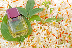 Bottle of Jasmine Oil Royalty Free Stock Images