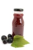 Bottle juice Stock Images