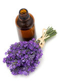 Bottle of lavender oil and bunch of lavender Stock Photo