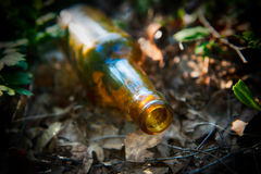 Bottle left in nature. Beer bottle thrown away and left in nature Stock Photos