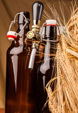 Bottle of light beer and spikes of barley Royalty Free Stock Images