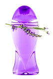 Bottle of liquid soap with lavender flower Royalty Free Stock Photo