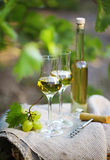 Bottle of liquor or  grappa and glasses with bunch of grapes Stock Photo