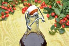 A bottle of liquor and rosehip fruit Stock Photos