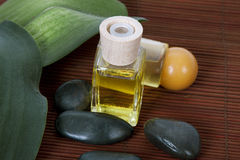 Bottle of massage oil spa Stock Photography