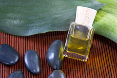 Bottle of massage oil spa Royalty Free Stock Photos