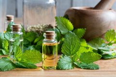 A bottle of melissa essential oil with fresh melissa leaves Royalty Free Stock Photos