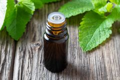 A bottle of melissa essential oil with melissa twigs royalty free stock photos