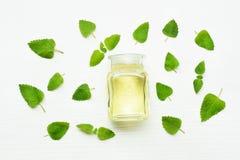 A bottle of melissa lemon balm essential oil with fresh leaves. A bottle of melissa lemon balm essential oil with fresh leaves on white stock photography