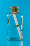 Bottle with message. Over a blue background Stock Images