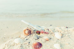 Bottle with a message or letter on the beach near seashell. SOS. Copy space. Royalty Free Stock Image