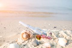 Bottle with a message or letter on the beach near seashell. SOS. Copy space Stock Images