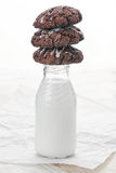 Bottle of milk with cookies Royalty Free Stock Image