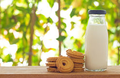 Bottle of Milk and Cookies Stock Image