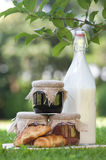 Bottle of milk,jam and croissants. Bottle of milk, tree home made jars of jam and two croissants in a grass Royalty Free Stock Images