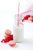 Bottle of milk. With some macaroons and fresh red currant Royalty Free Stock Images