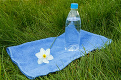 Bottle of mineral water,towel and  flower of narcissus on green. Bottle of mineral water,blue towel and white and yellow color daffodil on green grass Stock Photos