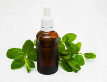 Bottle of mint oil and fresh mint. On a old wooden background Royalty Free Stock Photo