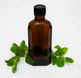 Bottle of mint oil and fresh mint Royalty Free Stock Photo