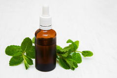 Bottle of mint oil and fresh mint. On a old wooden background Stock Images