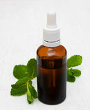 Bottle of mint oil and fresh mint. On a old wooden background Royalty Free Stock Images