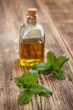 Bottle with mint oil Stock Photography