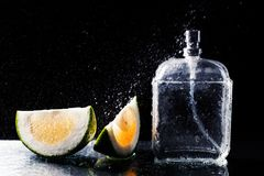Bottle of modern male perfume and citrus slices. On dark background Stock Image