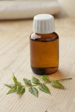 Bottle with Neem oil. And green twig Stock Images