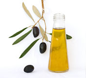 Bottle Of Olive Oil And Olive Branch Royalty Free Stock Photography