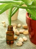 Bottle with oil of aloe vera and stones Stock Images