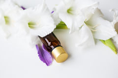 Bottle of Oil for Aromatherapy Stock Photography