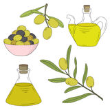 Bottle of oil and the branch of the olive tree. Vector illustration Stock Images