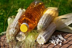 Bottle of oil and corn Stock Photo