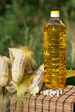 Bottle of oil and corn Royalty Free Stock Photos