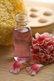 Bottle of oil, sponge and carnation flower Stock Images