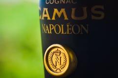 Bottle of old cognac Napoleon Royalty Free Stock Photo