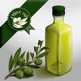 Bottle of olive oil. Bottle of olive oil and olive branch. Olive branch label Stock Image