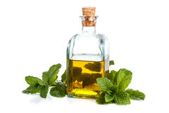 Oil with fresh mint Stock Images