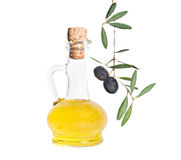 Bottle of olive oil and olive branch Royalty Free Stock Photos