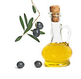 Bottle of olive oil and olive branch Royalty Free Stock Photo