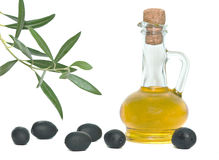 Bottle of olive oil and olive branch Stock Image
