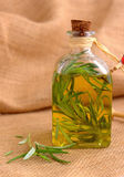 Bottle of olive oil, with  rosemary. Royalty Free Stock Photos