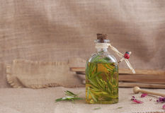 Bottle of olive oil, with  rosemary. Stock Image
