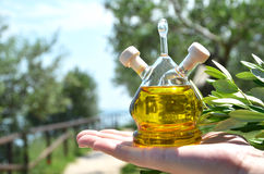 Bottle of olive oil Stock Photography