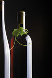 Bottle and one grape leaves Stock Photos
