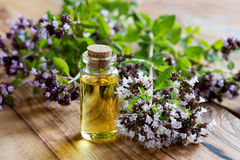 A bottle of oregano essential oil with blooming oregano. Twigs on a wooden background Stock Photo