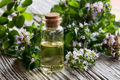 A bottle of oregano essential oil with fresh blooming oregano tw. Igs on a wooden background Royalty Free Stock Image