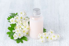 A bottle of organic shower gel with fresh flowers. Face and body care royalty free stock photography