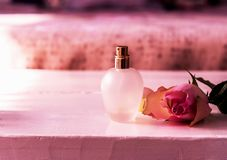 Bottle of parfume and pink rose for gift. Close up. Pink view Royalty Free Stock Image